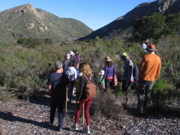 A guided group walks through Mission Trails Regional Park looking for signs of wildlife.
