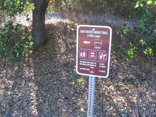 Our short but super fascinating wildlife tracking walk took us up the Oak Grove Inner Trail.