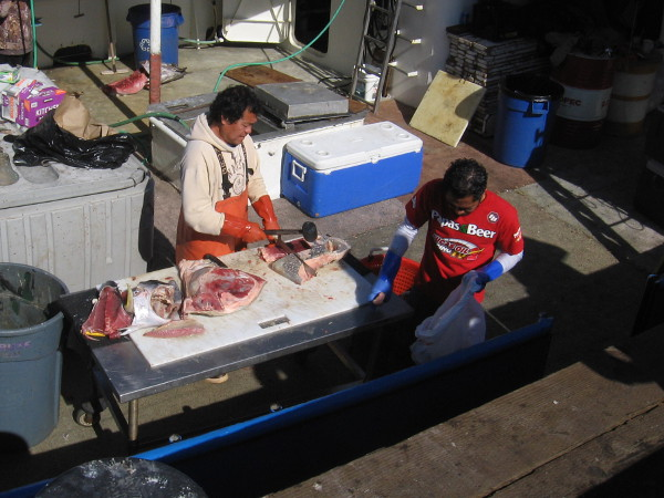 Fresh fish is cut right on the boat at Tuna Harbor Dockside Market.