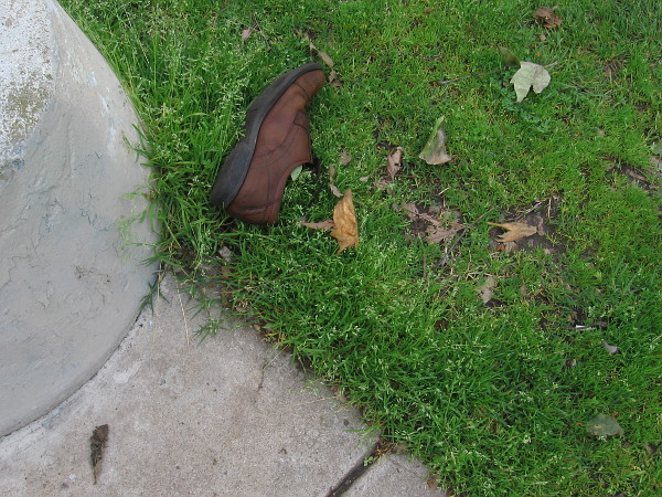 A mysterious shoe. A moment in somebody's life.