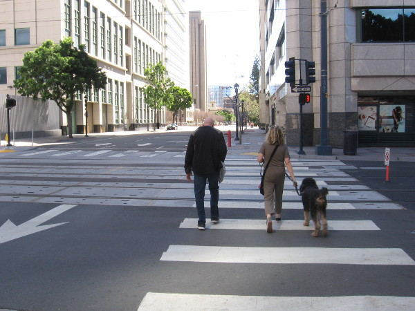 Many who live downtown were outside walking dogs.