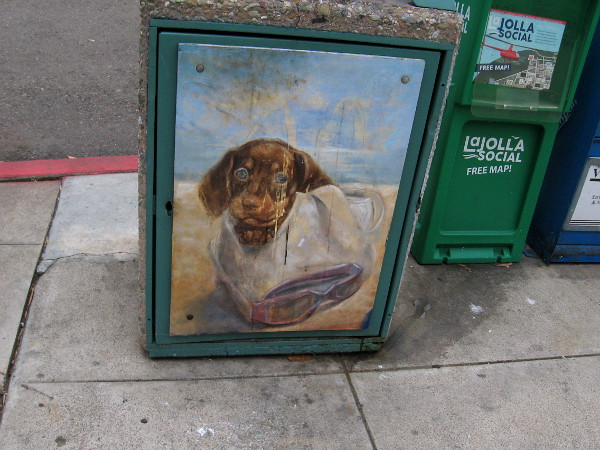 A cute dog peers from trashcan street art in La Jolla.