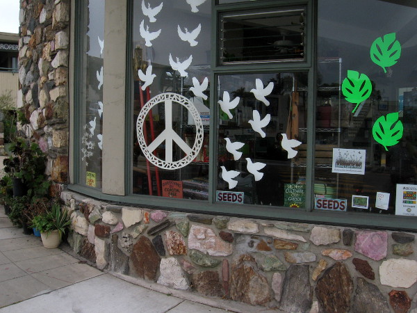 Some fun but simple artwork on the windows of Coastal Sage Gardening.