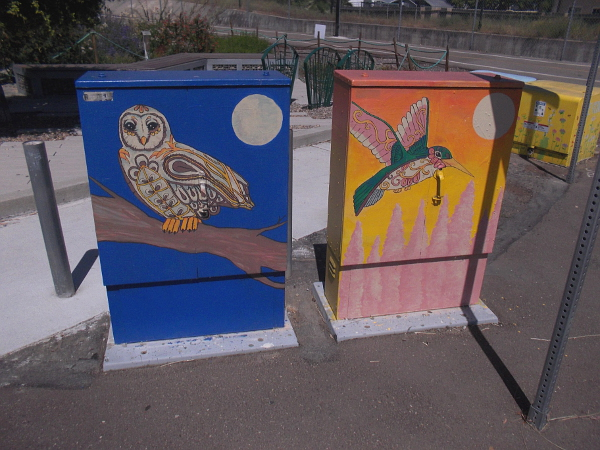 Nearby utility boxes with an elaborately painted owl and hummingbird.