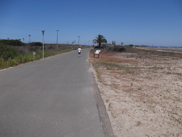 Walking along the San Diego Bay side of the State Park.