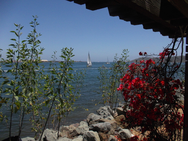 Another sail seen from one of the lath shelters along Shelter Island's Shoreline Park.