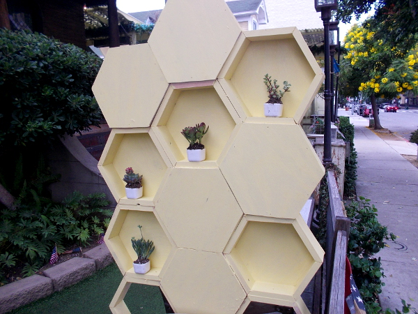 Tiny potted plants inside hive-like hexagons in front of Queenstown Public House.