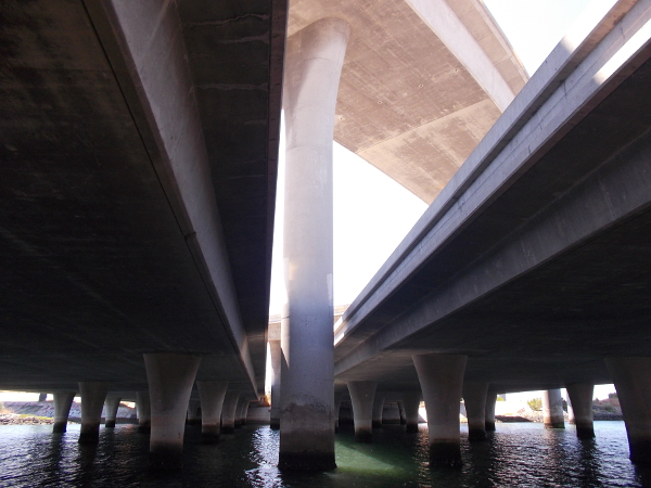 I took a bunch of cool photos under the freeway and shared them on my previous blog post!