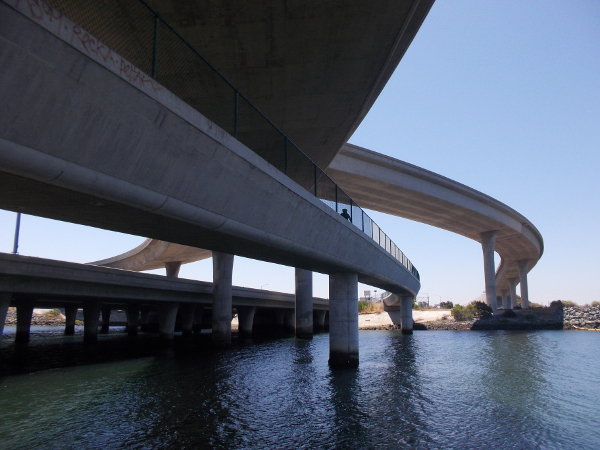 The head of a bicyclist is visible coming down the Gordy Shields Bayshore Bikeway Bridge.