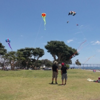 Sunday afternoon's bright sails and kites!