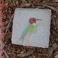 Nature and art at San Diego River Garden!