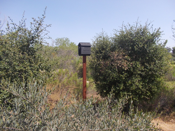 A bat box near the river.