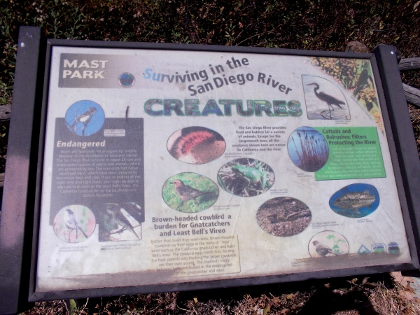 Another sign south of the river. Except for the largemouth bass, all the creatures shown are native to California and the river.