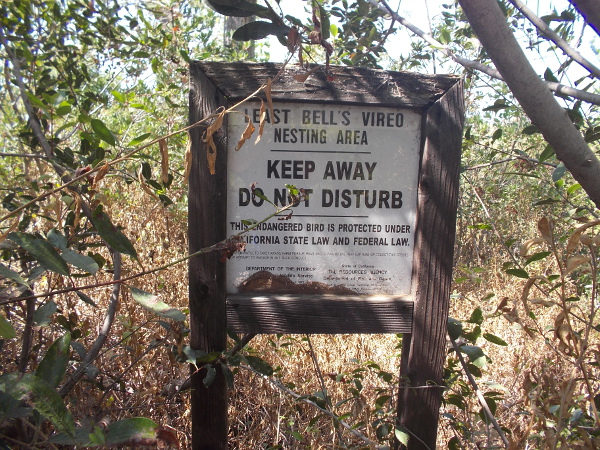 A sign tells people to keep away from the endangered Least Bell's Vireo nesting area.