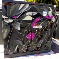Point Loma Garden Club floral street art.
