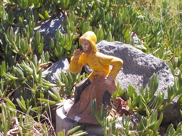 A fisherman in a yellow slicker sits on a rock in the ice plant.