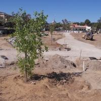 Progress at Old Town's new Kumeyaay park.