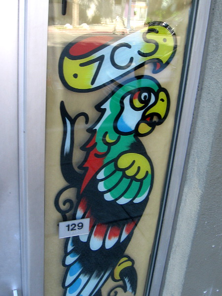 Colorful parrot in window of Seven Seas Tattoo.