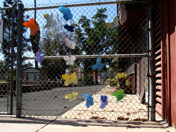 Butterflies decorate a gate to an outdoor playground and gathering place.