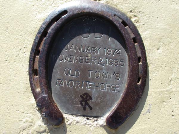 CODI. January 1974 - November 2, 1995. Old Town's Favorite Horse.