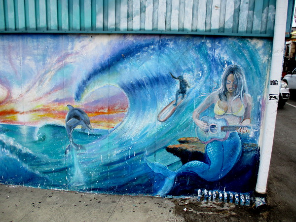 A sunset, dolphin, surfer and guitar-strumming mermaid!