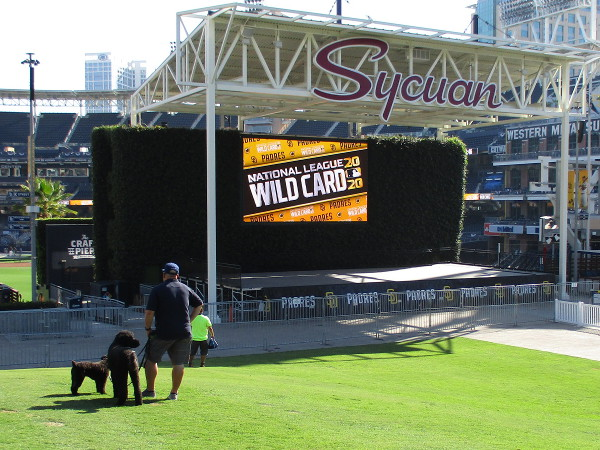 National League Wild Card graphic splashed on the video screen that faces Gallagher Square.
