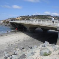 The unique bridges of Torrey Pines State Beach.