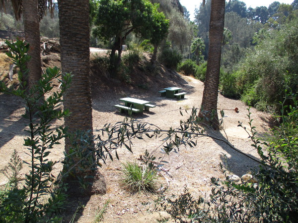 Between the Inspiration Point parking lot and the viewpoint are some picnic tables. Various canyon trails connect this area with other parts of Presidio Park.