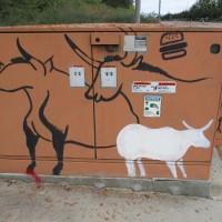 Fun street art along Black Mountain Road!