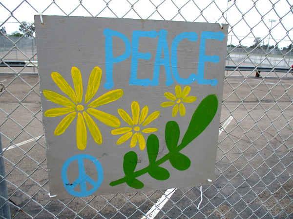 Peace on a fence.