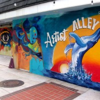 The cool murals of Artist Alley in Oceanside!
