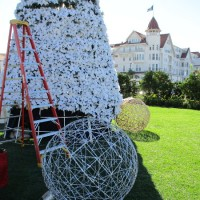 Christmas tree rises at Hotel del Coronado!
