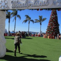 Hotel del Coronado's Winter Wonderland!