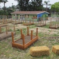 La Mesa Community Garden coming to MacArthur Park!