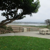 Quiet beauty at Maxton Brown Park in Carlsbad.