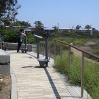 Bird sightings along Tijuana Estuary boardwalk!